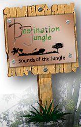 Destination Jungle Safaris: Your tour operator in Uganda!