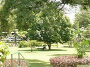 Park at Sheraton hotel in the center of Kampala, Uganda