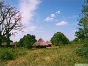 Traditional houses in Soroti, Uganda