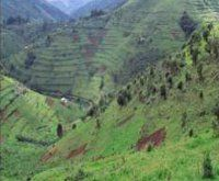 Maranatha Tours and Travel Uganda: Landscapes