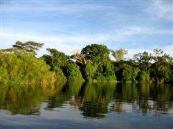 Boat trip on Lake Mburo