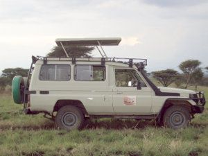 Destination Jungle: Best cars for safaris